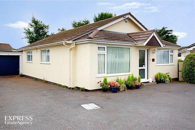 Thumbnail Detached bungalow for sale in Davies Avenue, Paignton, Devon