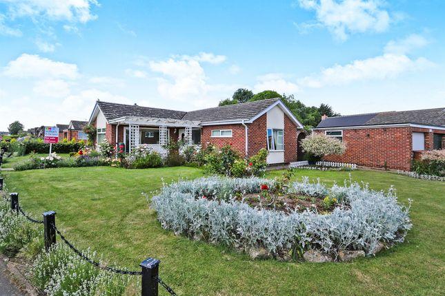 Thumbnail Detached bungalow for sale in Beech Avenue, Attleborough