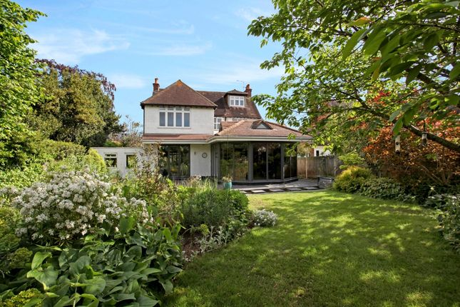 Thumbnail Detached house to rent in York Road, Windsor