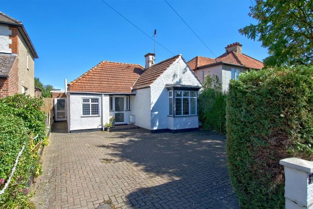 Thumbnail Detached bungalow to rent in Shelford Road, Trumpington, Cambridge