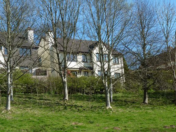 Thumbnail Detached house for sale in Hollam Drive, Dulverton