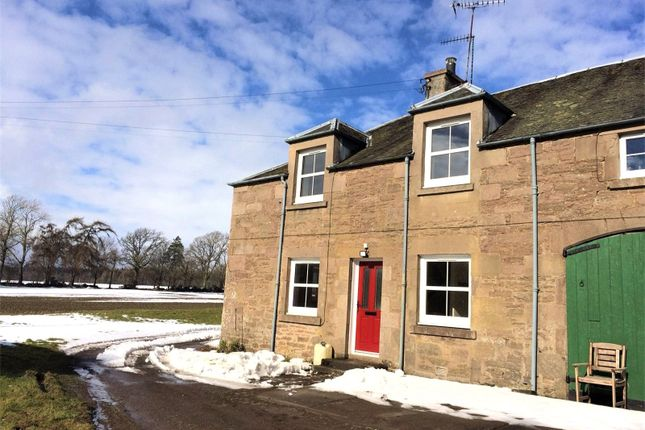 Thumbnail Flat to rent in 2 Charlesfield Cottage, Gask, Auchterarder, Perth And Kinross