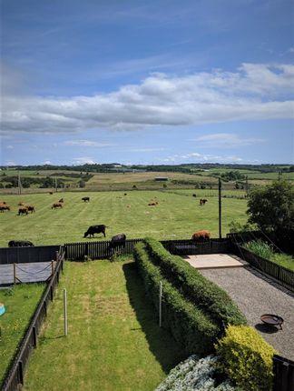 Views of Coatbridge Road, Glenboig, Coatbridge ML5