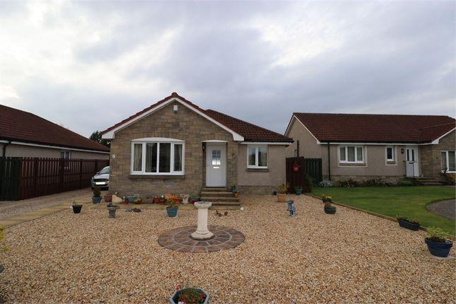 Thumbnail Detached bungalow for sale in Kilmux Park, Kennoway, Fife