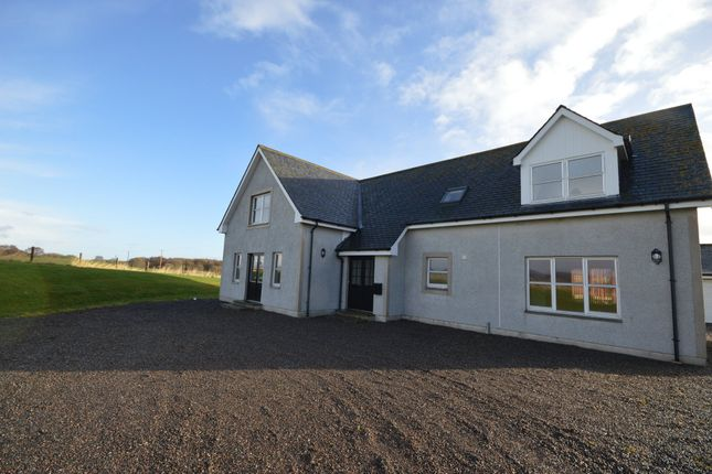 Thumbnail Detached house to rent in Culbokie, Dingwall