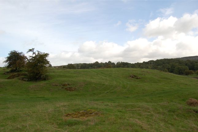 Lot 1 of Meadow & Pasture Land Underbarrow, Thorns Lane, Underbarrow, Kendal, Cumbria LA8