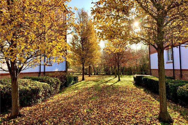 Gardens of Meadow View, Chertsey, Surrey KT16