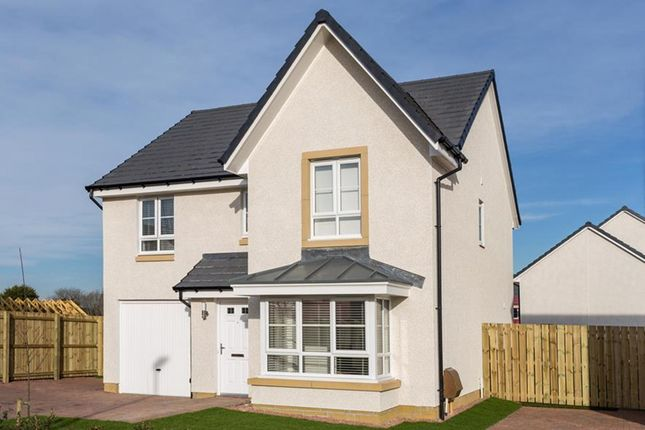 "Thumbnail Detached house for sale in ""Dunvegan"" at Falkirk Road, Bonnybridge"
