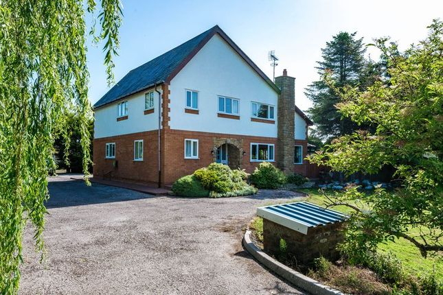 Thumbnail Detached house for sale in Long Lane, Banks, Southport
