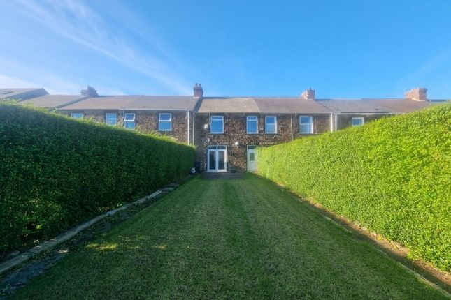 Thumbnail Terraced house to rent in Dacre Gardens, Consett