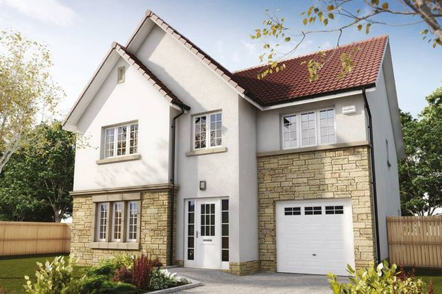"Thumbnail Detached house for sale in ""The Crichton"" at Hillview Gardens, Nivensknowe Park, Loanhead"