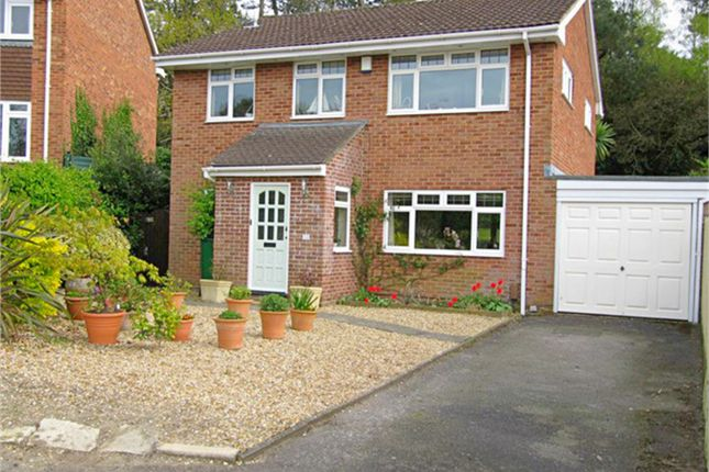 Thumbnail Detached house for sale in Potters Way, Lower Parkstone, Poole, Dorset