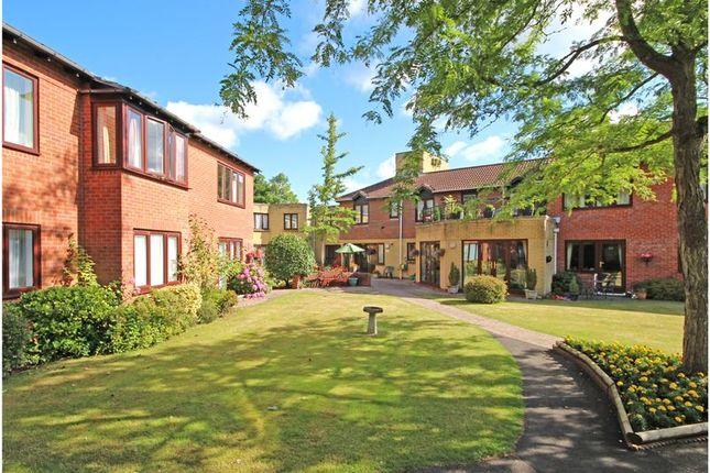 Thumbnail Property to rent in Grigg Lane, Brockenhurst