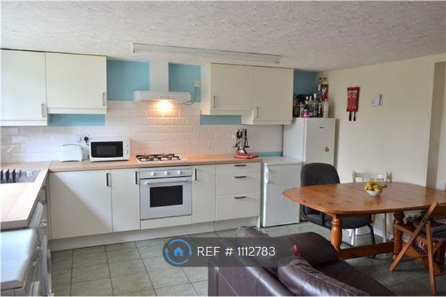 Thumbnail Terraced house to rent in Oxford Terrace, Gloucester