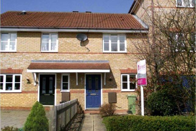 Thumbnail Terraced house to rent in Lindisfarne Drive, Monkston, Milton Keynes
