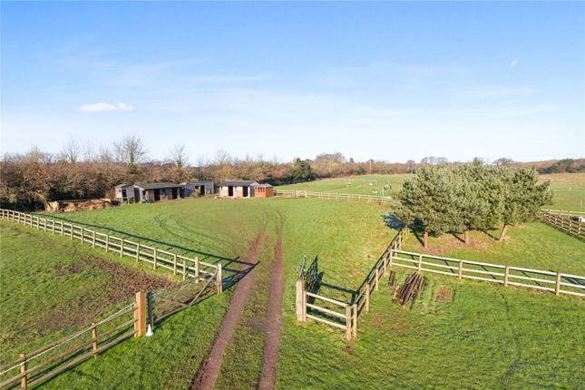 Paddocks And Stables