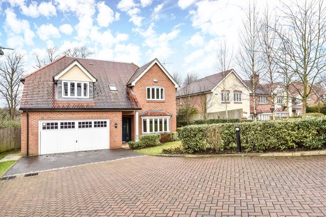 Thumbnail Detached house to rent in Holmoak Close, Purley
