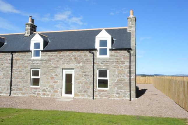 Thumbnail Semi-detached house to rent in Cottage Kinmundy Home Farm, Kinmundy