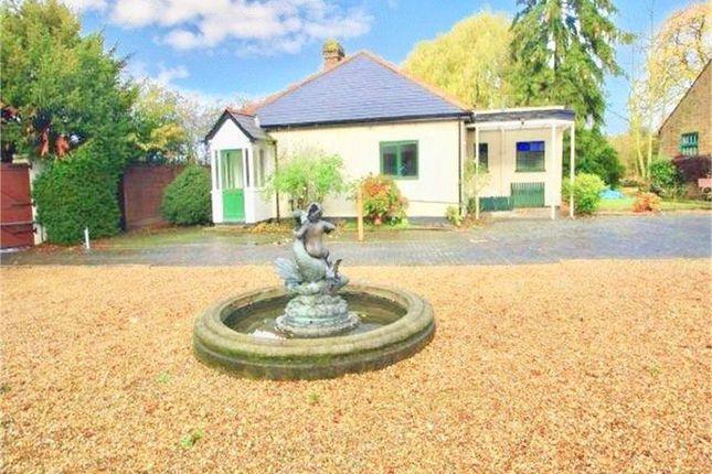 Thumbnail Detached bungalow to rent in Wood Lane, Iver, Buckinghamshire