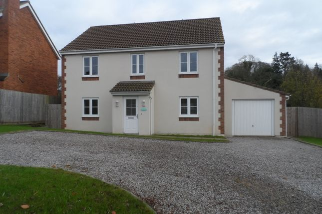 Thumbnail Detached house to rent in Well Meadow, Staunton