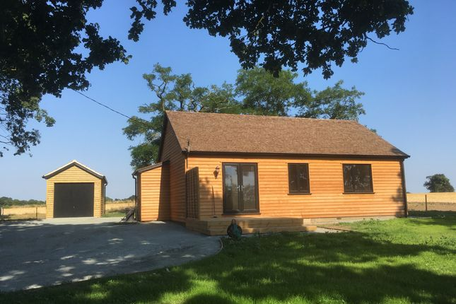 Thumbnail Detached bungalow to rent in Postwick, Norwich