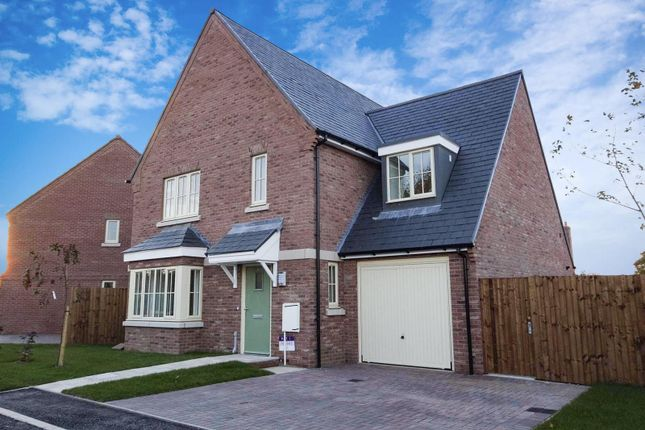 Thumbnail Detached house for sale in The Heron, Heyford Meadows, Hankelow