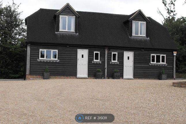 Thumbnail Semi-detached house to rent in Hammer Lane, Hailsham