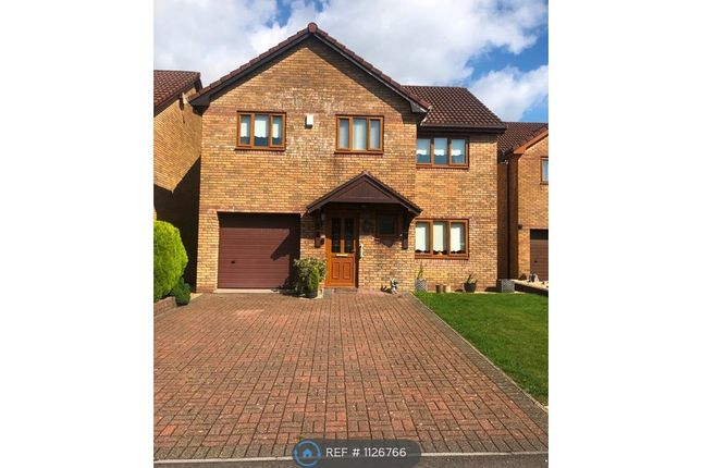 Thumbnail Detached house to rent in Oakwood Drive, Swansea