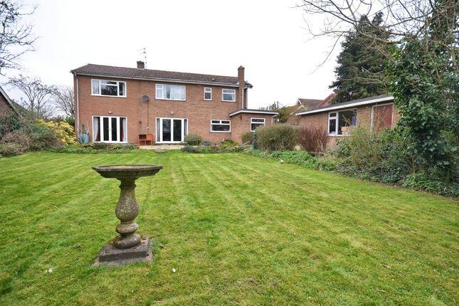Thumbnail Detached house for sale in Lynn Road, Hillington, King's Lynn
