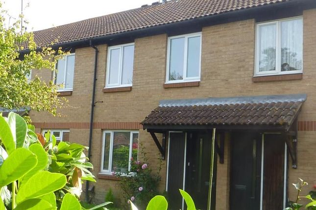 Thumbnail Flat to rent in Taylor Close, Farnborough, Orpington