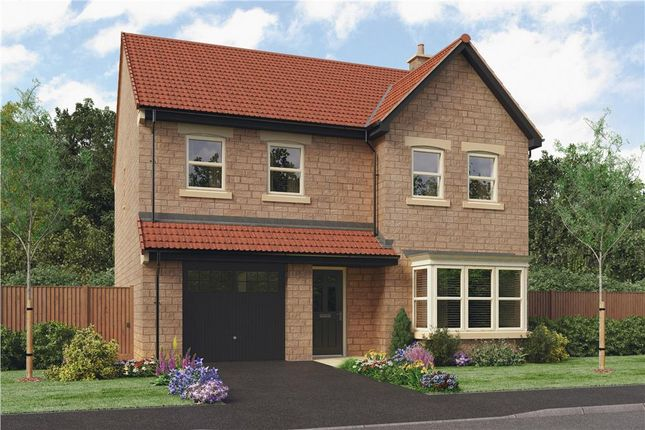 "Thumbnail Detached house for sale in ""Ryton"" at Grove Road, Boston Spa, Wetherby"