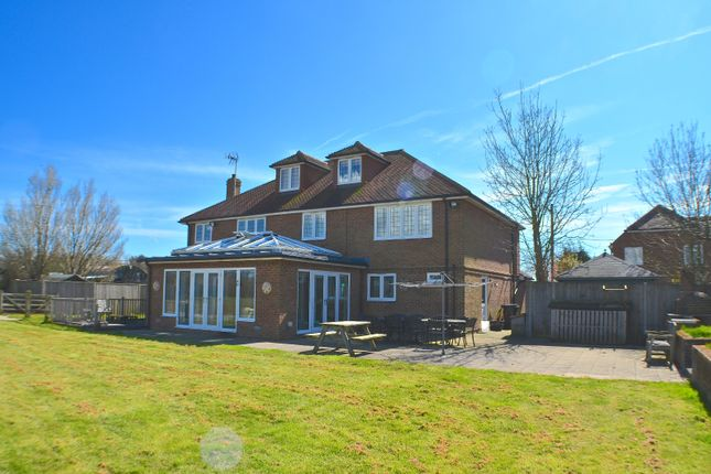 Thumbnail Detached house for sale in Lower Dicker, Hailsham