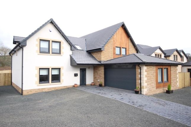 Thumbnail Property for sale in Holm Road, Crossford, Carluke