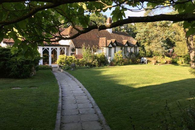 Photo 4 of North Common Lane, Landford, Salisbury SP5