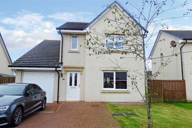 Thumbnail Detached house to rent in Craigleith Drive, Portlethen, Aberdeen