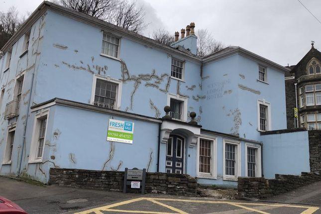 Thumbnail Detached house for sale in Mount Pleasant, Mount Pleasant, Swansea