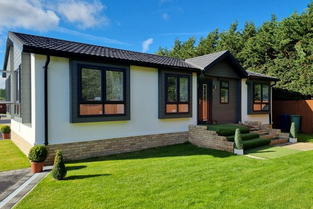 Thumbnail Detached bungalow for sale in Wisbech Bypass, Elm, Wisbech