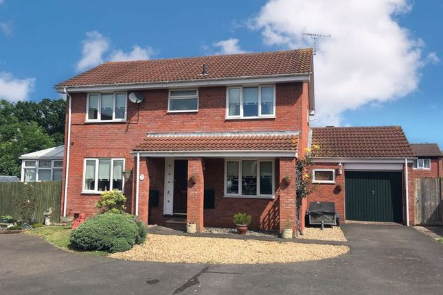 Thumbnail Detached house for sale in Sundew Close, Chestnut Drive, Taunton - Detached Family Home, Conservatory, Large Garage
