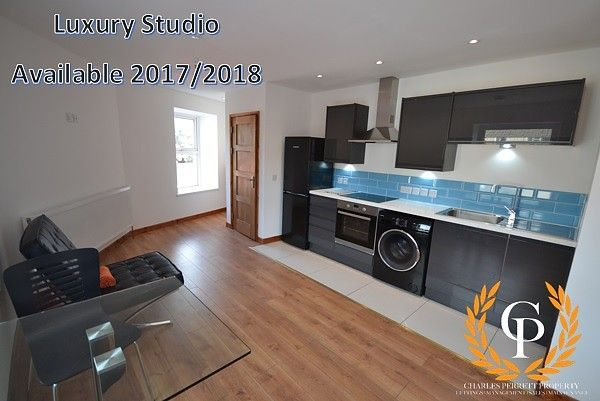 Thumbnail Property to rent in Walter Road, Swansea
