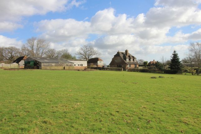 Thumbnail Farm for sale in Horebeech Lane, Marle Green, East Sussex