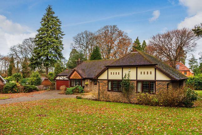 Thumbnail Detached bungalow for sale in Osmunda Bank, Dormans Park, East Grinstead