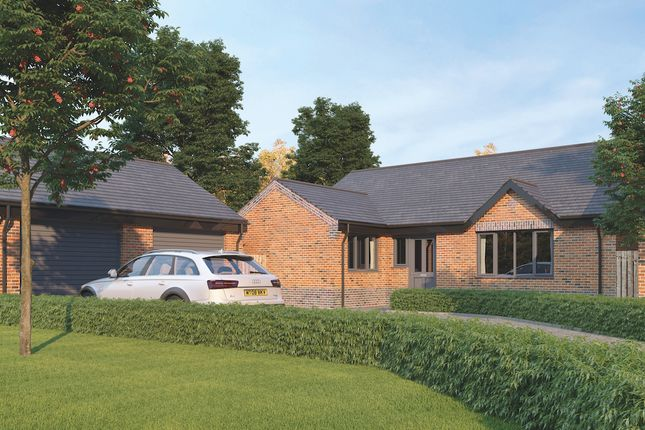 Thumbnail Detached bungalow for sale in The Danbury, St Mary's Walk, Newbold