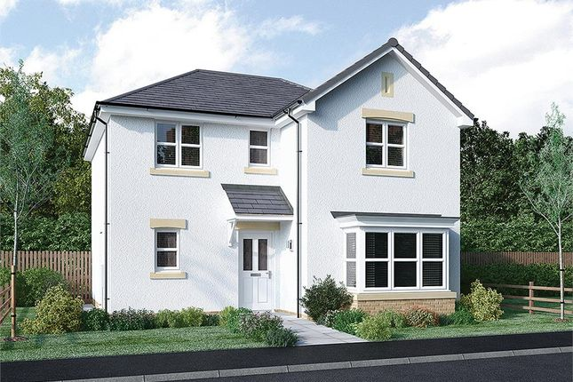 """Thumbnail Detached house for sale in """"Lamont"""" at Broomhouse Crescent, Uddingston, Glasgow"""