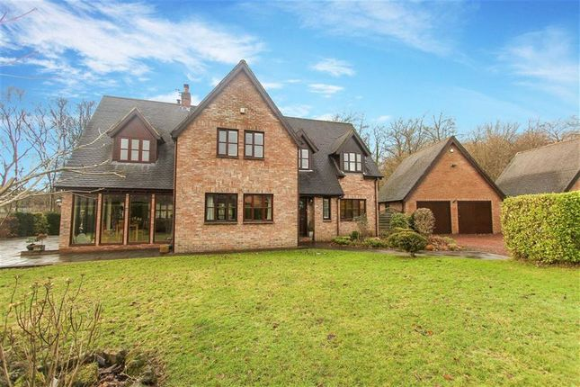 Thumbnail Detached house for sale in Chesterwell, Morpeth, Northumberland