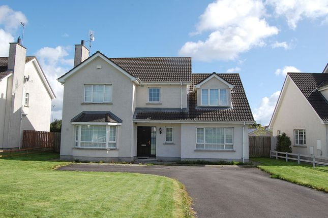 Thumbnail Detached house for sale in 90 Rathmount, Blackrock, Louth