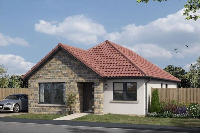 Thumbnail Detached bungalow for sale in The Avenue, Lochgelly, Fife