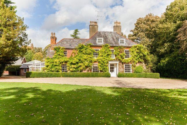 Thumbnail Property to rent in Church Lane, Worting, Basingstoke