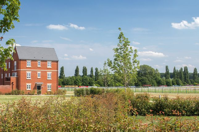 "Thumbnail End terrace house for sale in ""Houghton"" at Racecourse Road, Newbury"