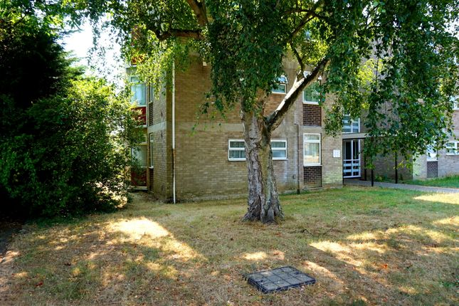 Thumbnail Flat for sale in Elm Estate, East Bergholt, Colchester