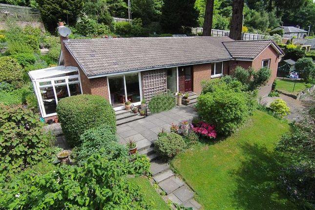 Thumbnail Detached bungalow for sale in Wilton Park Road, Hawick